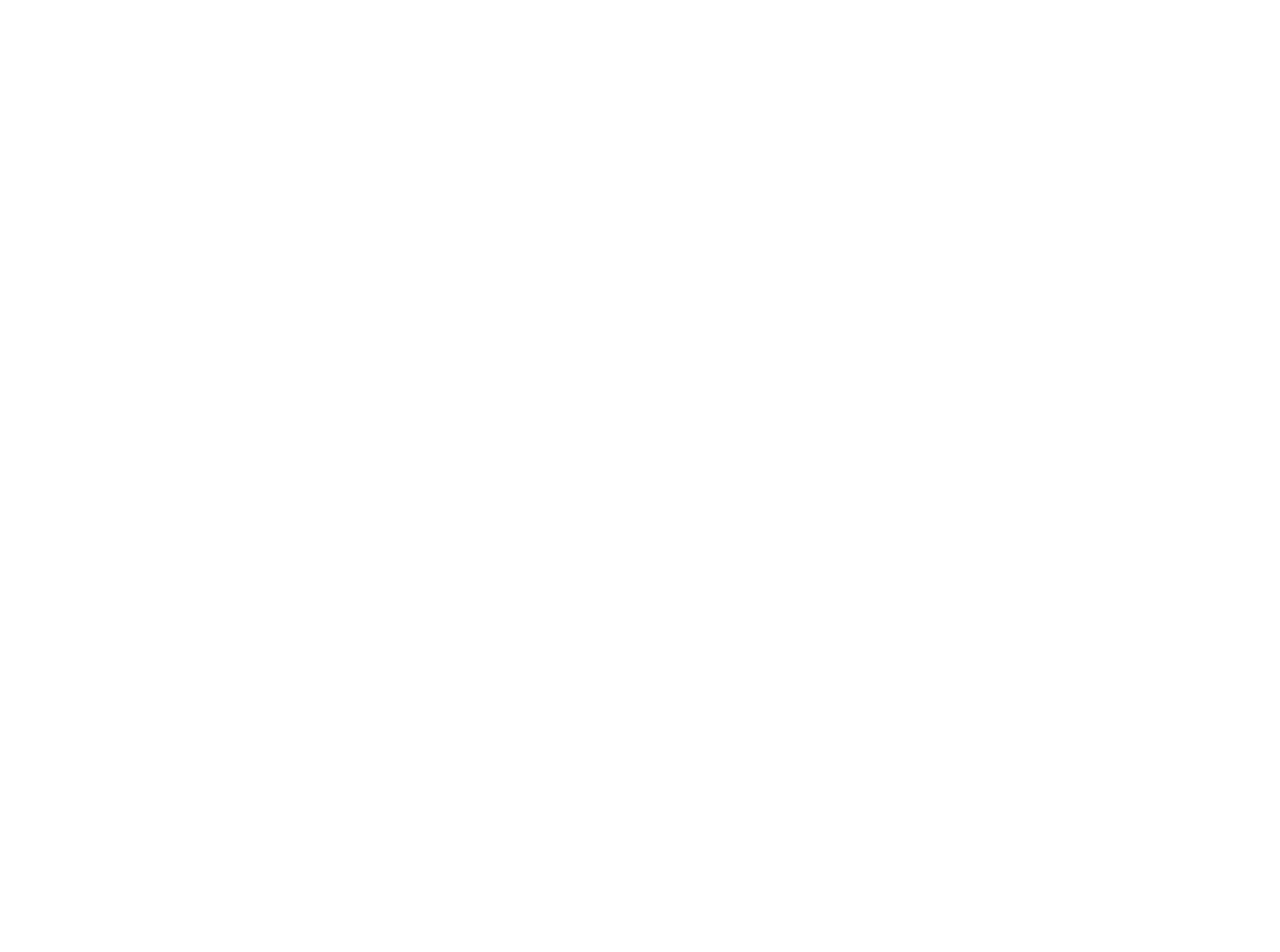 village of birchwood logo - smaller